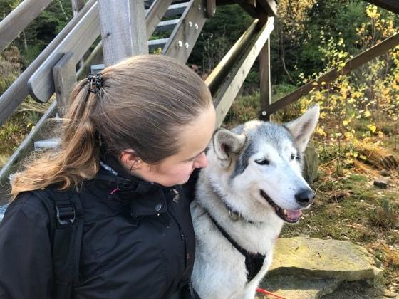 Perfekt Ein herz für tiere - Gassi-Service, Gastfamilie für Hunde  MZ44