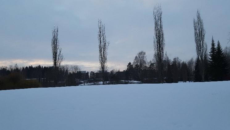 Cecilia - Vantaa back image