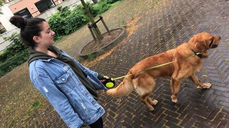 Ipek in Sterrebeek back image